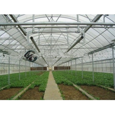 Greenhouse for Growing Vegetables