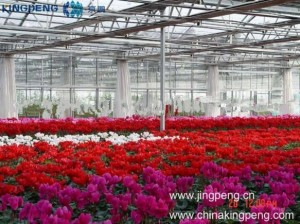 10mm PC Sheet Greenhouses